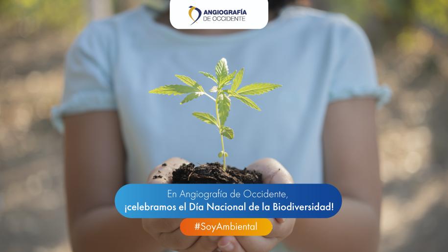 En Angiografía de Occidente, ¡celebramos el Día nacional de la Biodiversidad!